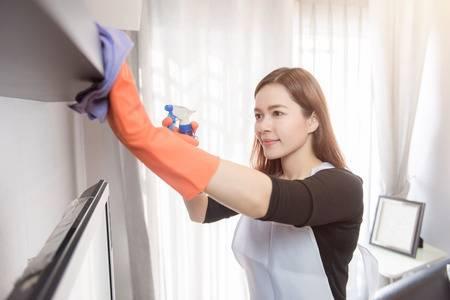 sg maid service