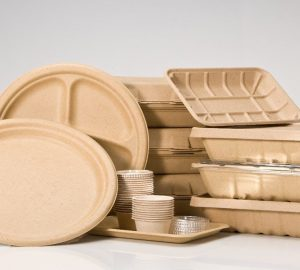 biodegradable food packaging